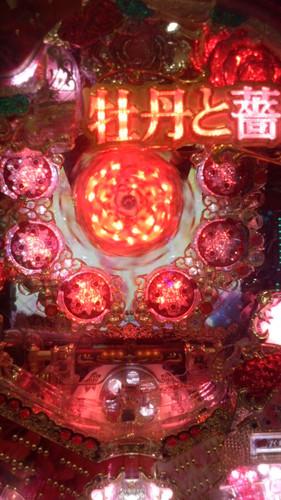 牡丹と薔薇 2012.12.22